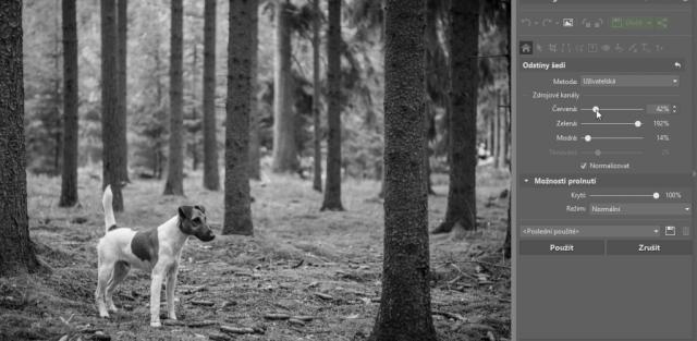 Jak na černobílou fotografii: uživatelská metoda převodu do černobílé.