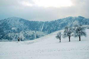 snow_wb