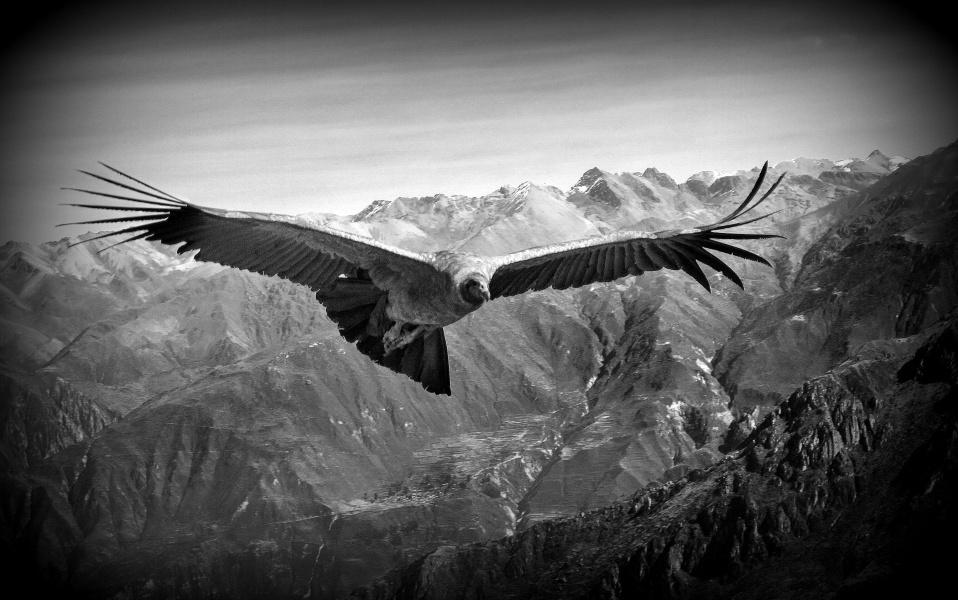 Majestátnost, Colca Canyon