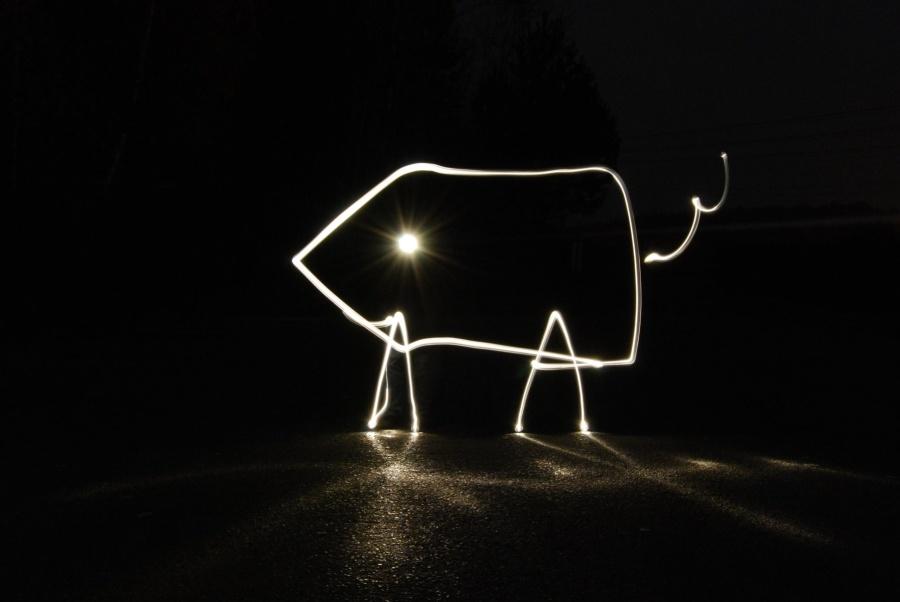 Kreslení světlem vybízí kfotografickým hrátkám svou nenáročností a možností zkoušet nejrůznější tvary, nápisy atd. (Autor: Tukan)