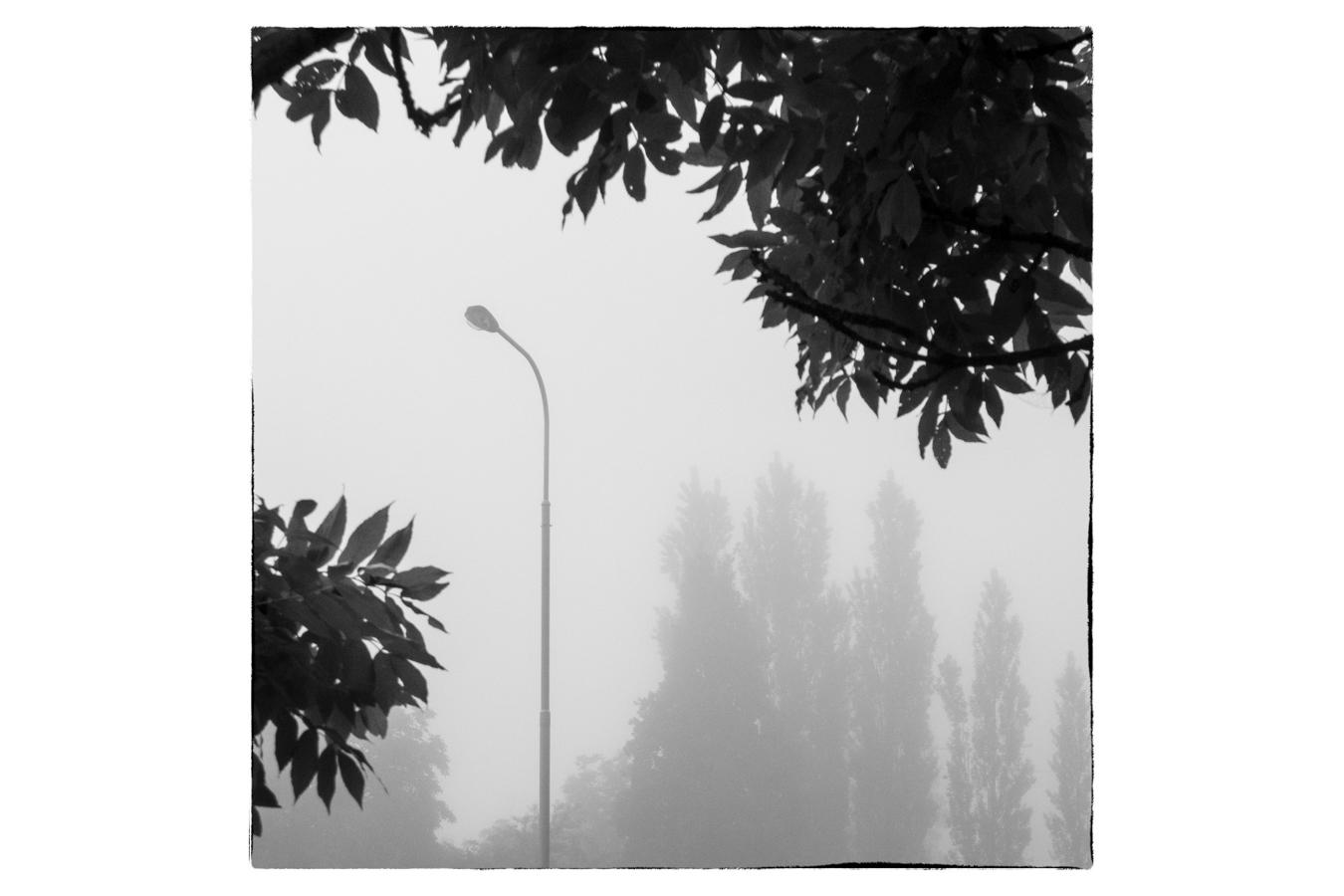 Tato fotografie sice obsahuje konkrétní předmět kompozičně umístěný ve zlatém řezu, ale je zřejmé, že se nejedná primárně o fotografii pouliční lampy. Motivem fotografie je světelná atmosféra a zajímavá kompozice.jpg