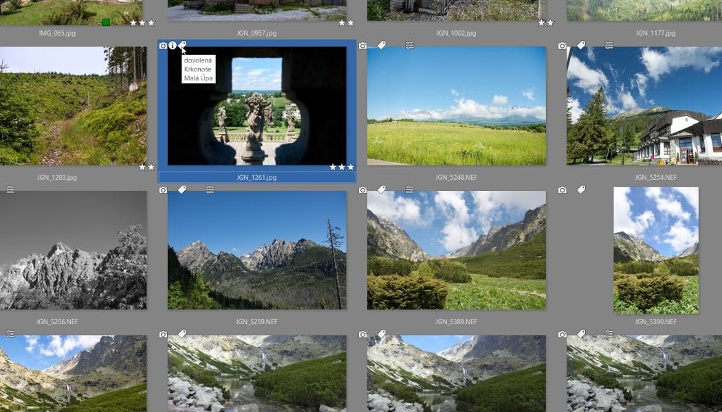Jak na třídění fotografií? Pomůžou vám klíčová slova