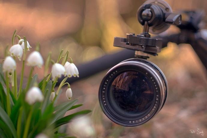 Warum ständig nur Blumen fotografieren? Experimentieren Sie mit der Schärfentiefe und den Blumen als Ergänzung zum Foto. Autor: Petr Šedý.