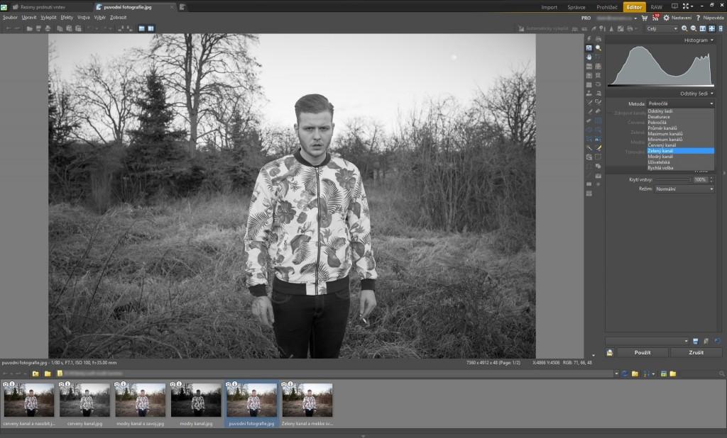 Pomocí nástroje Odstíny šedi jsme fotografii získali černobílý efekt.