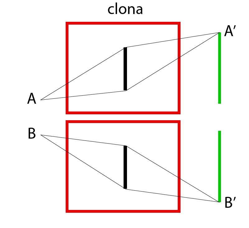 Průchod světla ze dvou bodů skrz objektiv.jpg