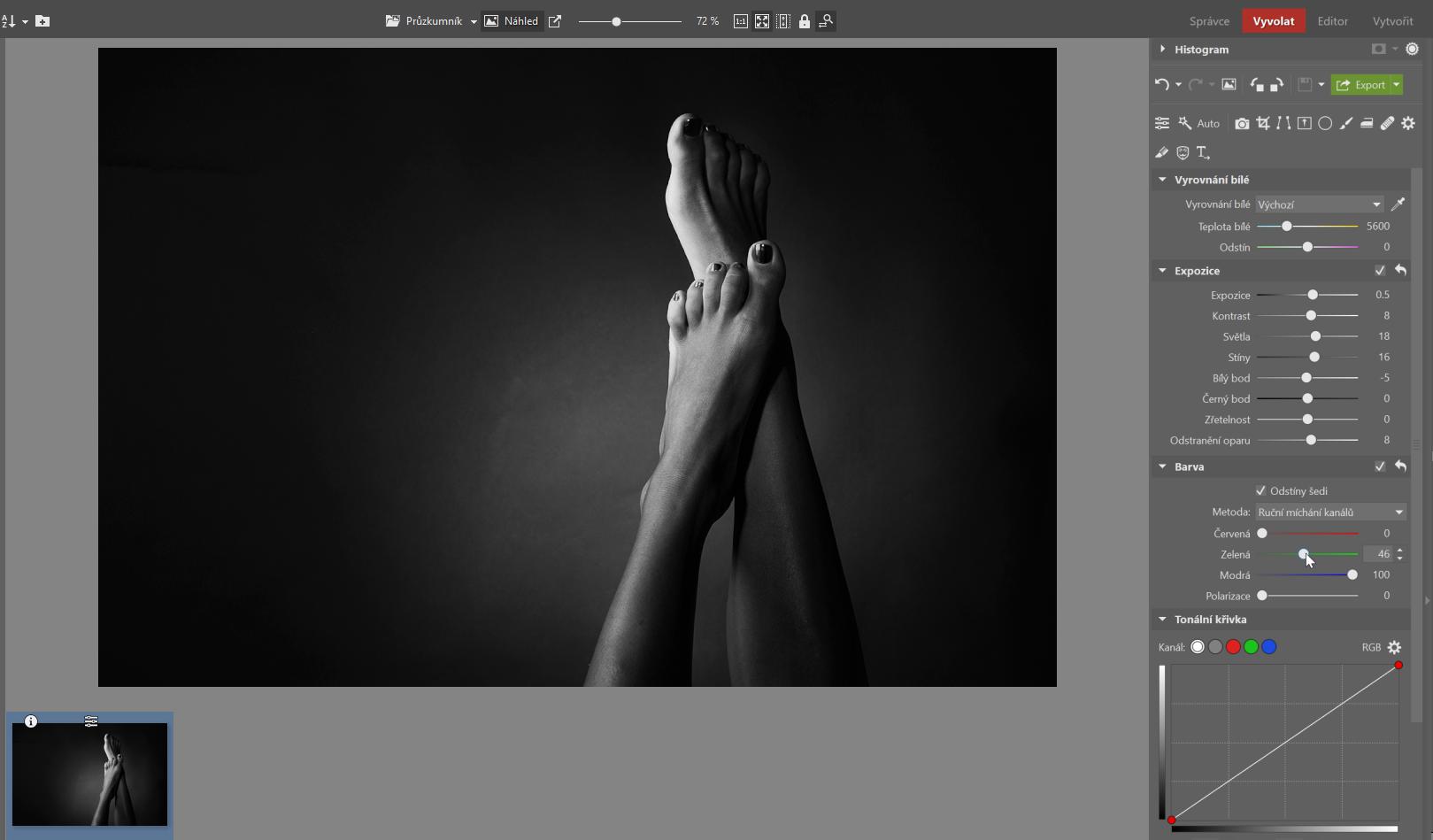 Low key úprava Zoner Photo Studio X