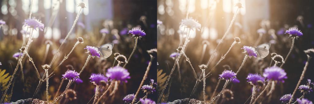 Porovnání původní a upravené fotky.jpg