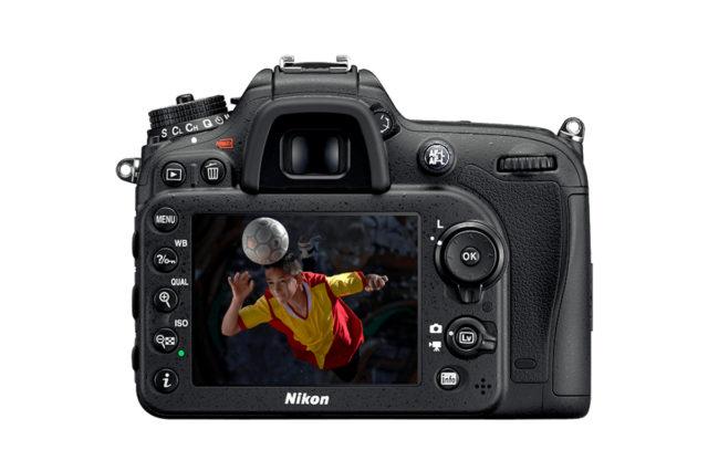 Jedním ze základů makrofotografie je správné ostření.