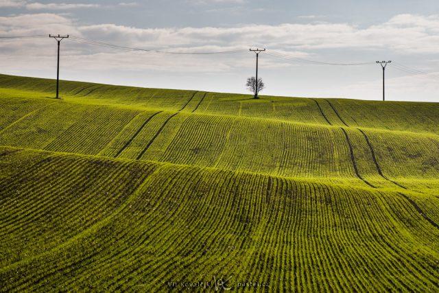 Focení krajiny teleobjektivem: pole se sloupy.