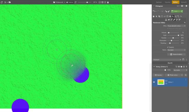 Možnosti retuše v ZPS X: nevhodné použití retušovacího štětce.