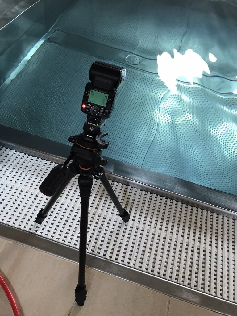 Jak fotit pod vodou - blesk