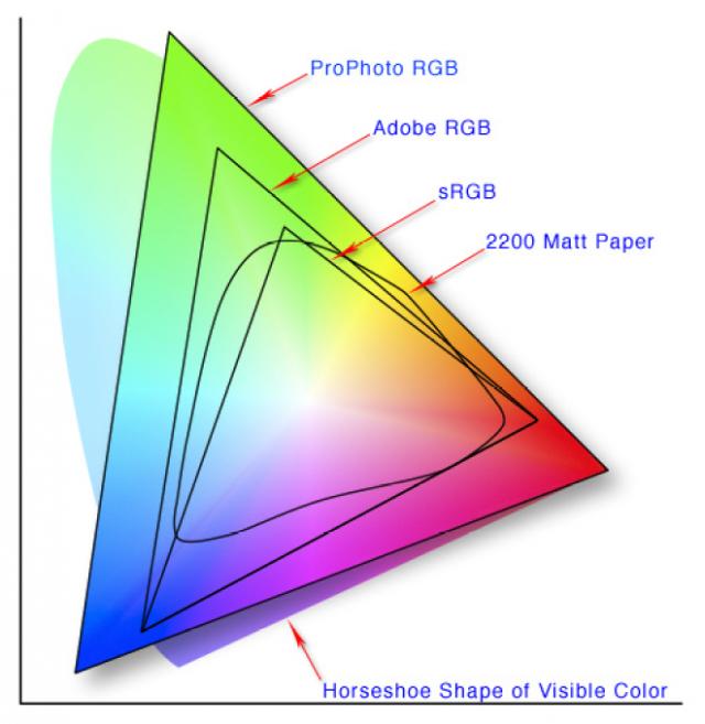 Jak vybrat monitor pro fotografy: barevný prostor.