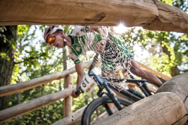 Jak fotit sport: horská kola - detail pavučiny.
