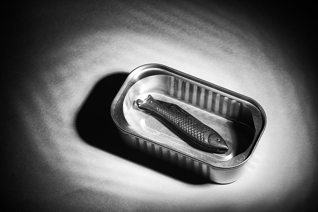 Jak fotit zátiší - rybička