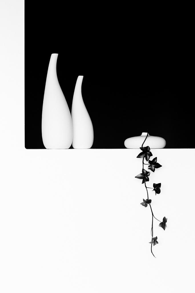 Jak fotit zátiší - vázy s břečťanem