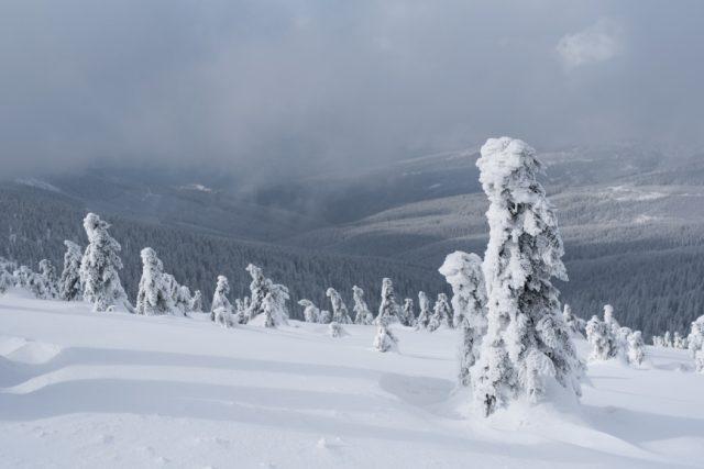 zimni snih krajina expozice