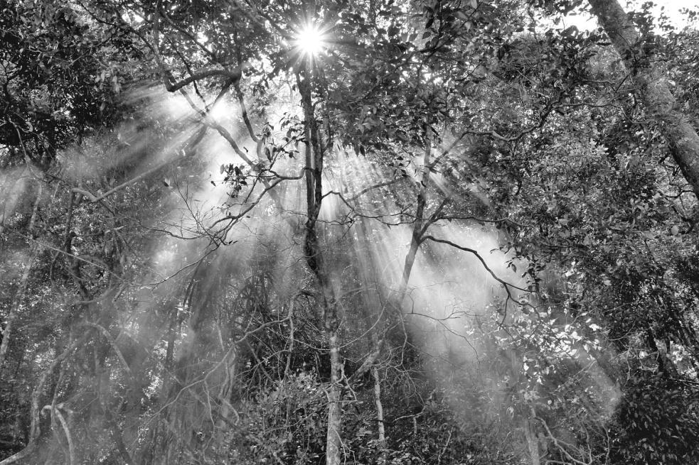 Jan Svatoš: fascinuje mě analog, nejsem příznivcem přehnané fotomanipulace