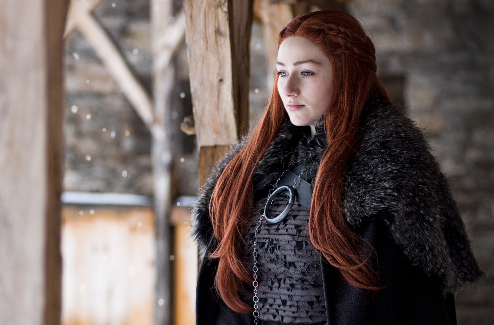 Jak fotit cosplay: základem je dobrý kostým, příprava a inspirace - Sansa Stark