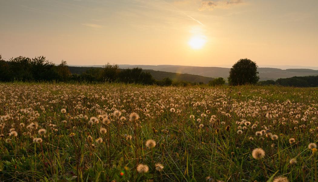 Změna světla v krajině - úvodní foto