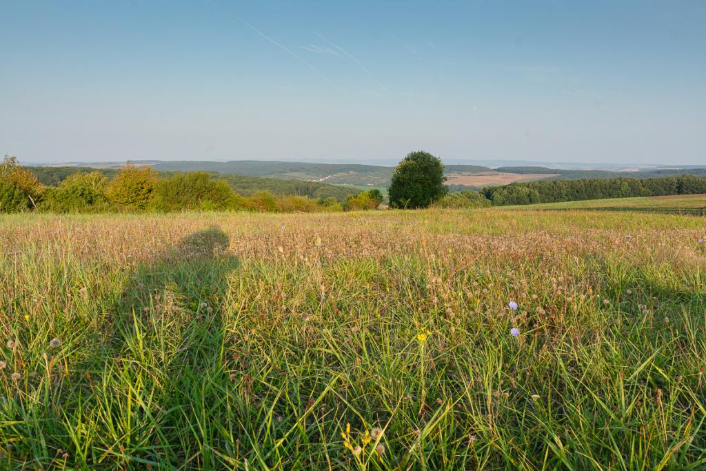 Krajina během dne