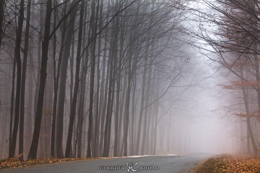 Jak v mlze nafotit detaily krajiny - silnice v mlze