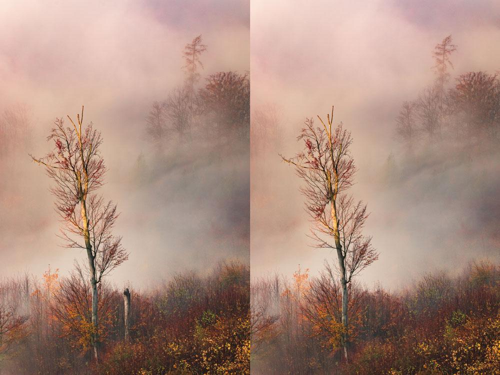 Jak v mlze nafotit detaily krajiny - editace fotek s mlhou