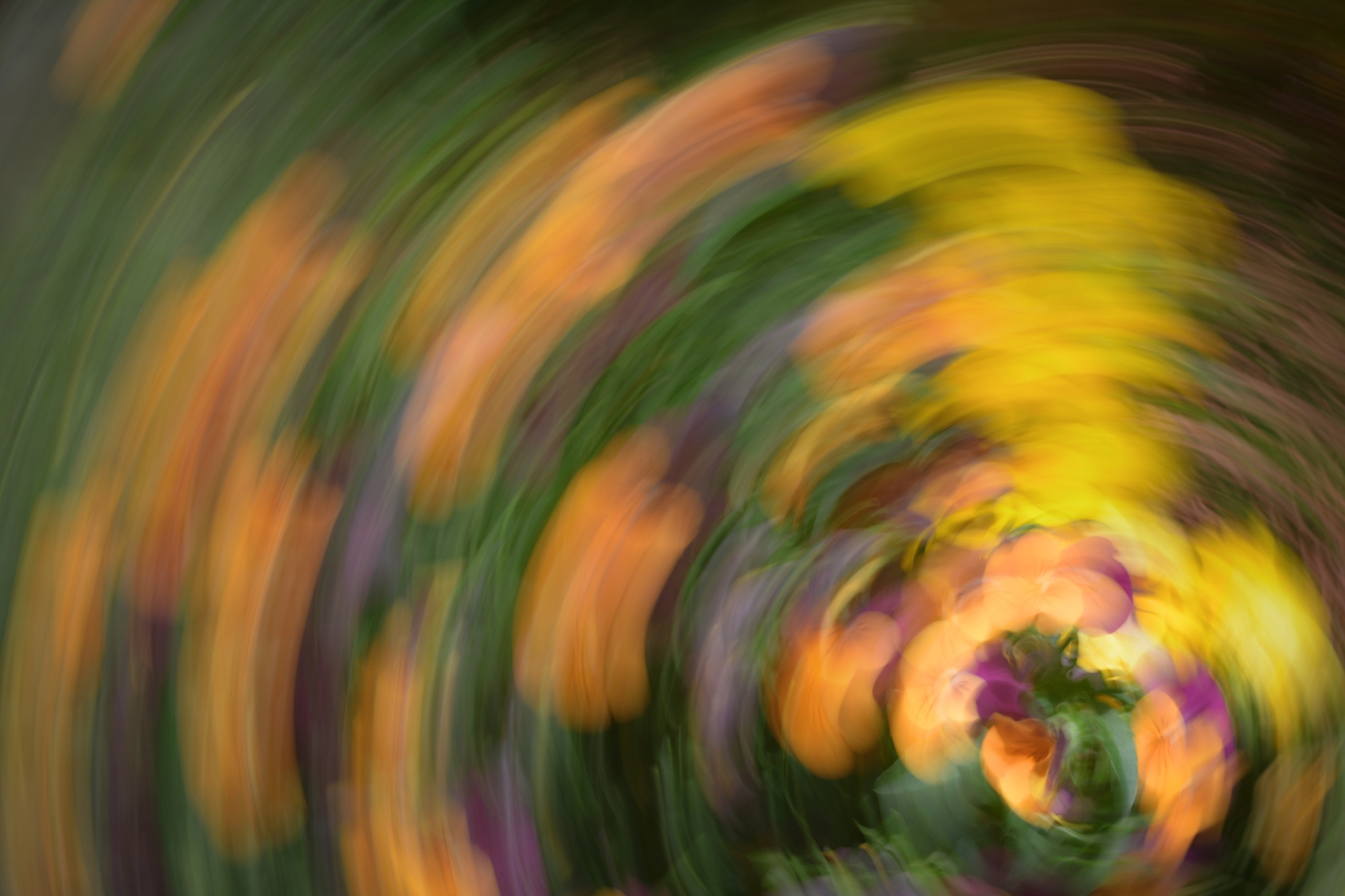 Fotografické experimenty s pohybem, které vám zamotají hlavu!