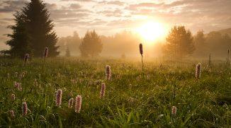 Dvorní fotograf Šumavy Pavel Semerád: Recept na dobrou fotku krajiny? Ranní slunce a fotogenická oblačnost