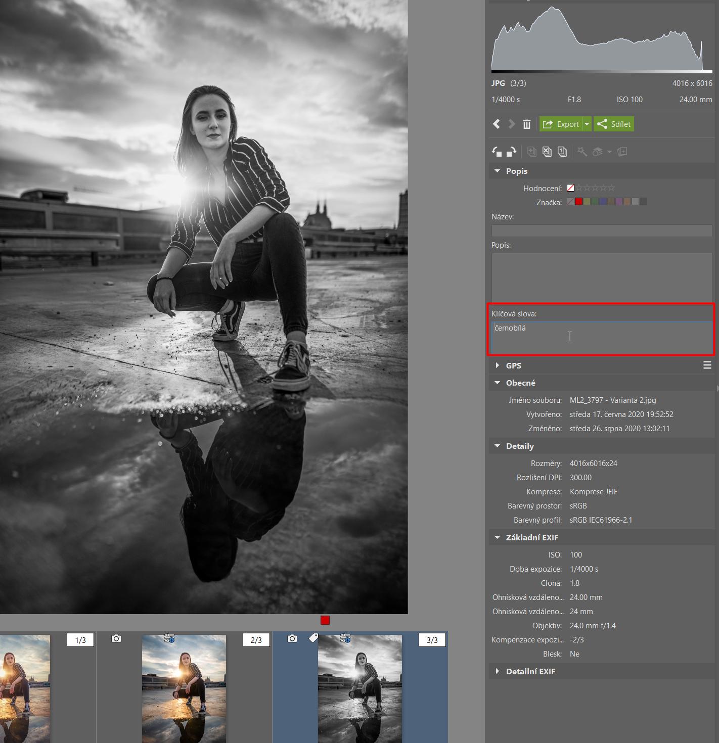 Varianty: vytvořte různé verze úprav jedné fotky - klíčová slova u variant