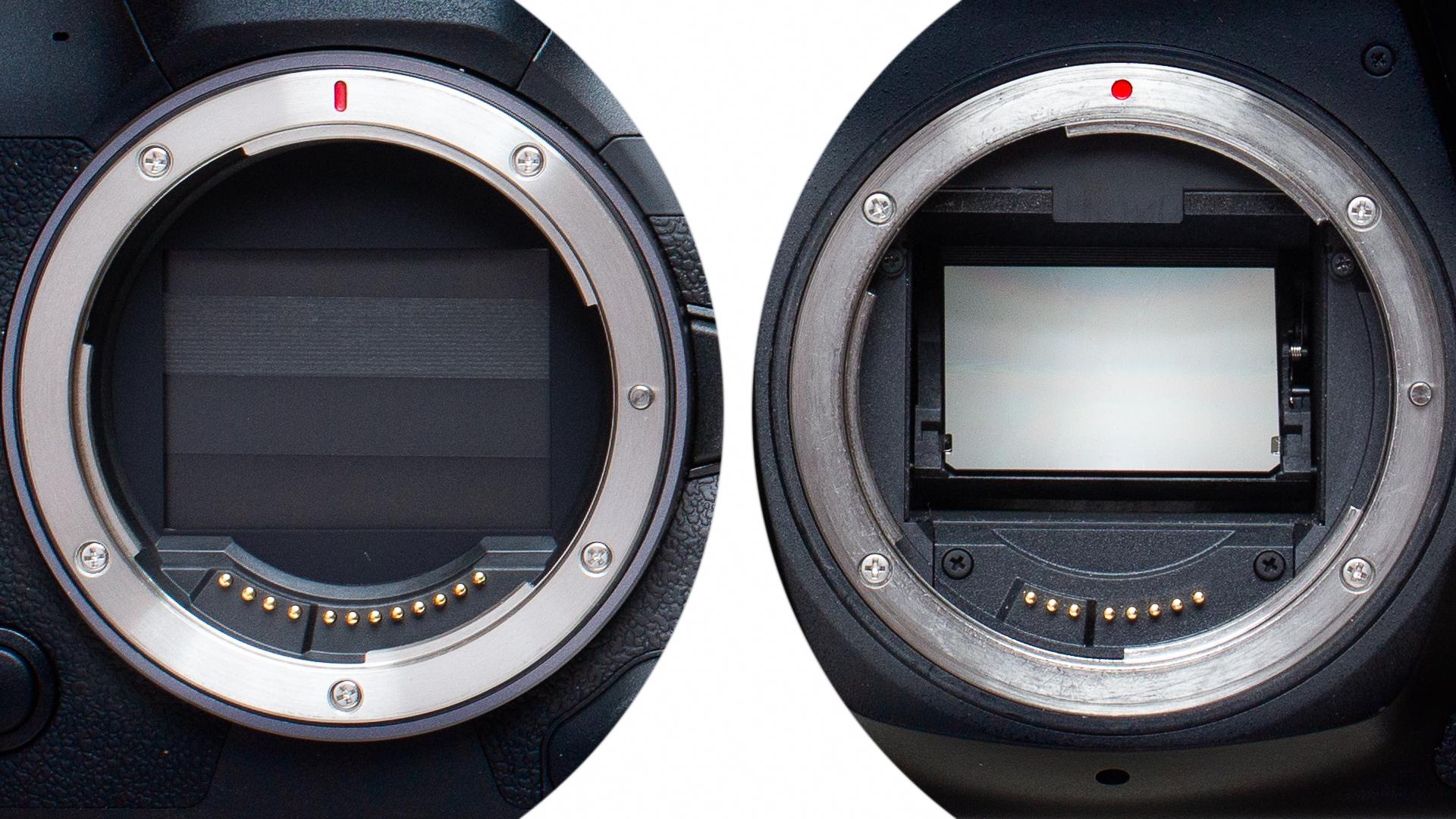 Srovnání zrcadlovek a bezzrcadlovek. Která je pro vás ta pravá?